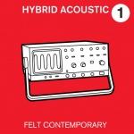 hybrid acoustic