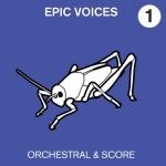 epic voices
