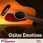 guitar emotions