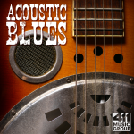 acoustic blues 1