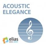 acoustic ele