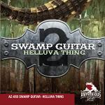 swamp guitar two